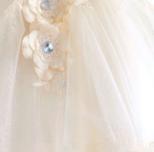 Picture of Elegant Princess Grown with Tulle Bottom