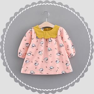 Picture of Printed Flower Birds Baby Girl Longsleeve Dress