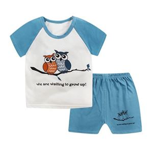 Picture of Owl Printed Short Sleeve Casual Wear Two-Piece Clothing Set