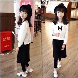 Picture of Korea Stylist M Long-Sleeve Top and Legging Skirt